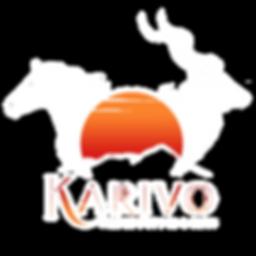 Karivo Logo 2020 ohne blackfade.png