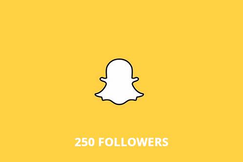 250 followers Snapchat