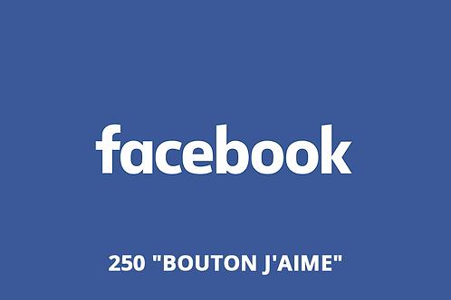 "250 ""Bouton J'aime"" Site internet"