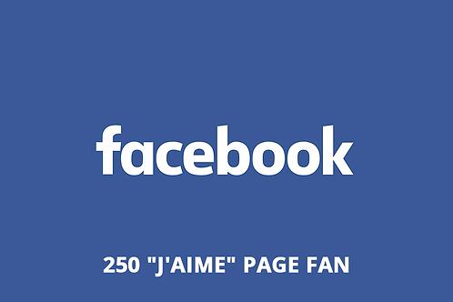 """250 """"J'aime"""" page fan Facebook"""