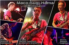 マコスギハマ1000×700-5.jpg
