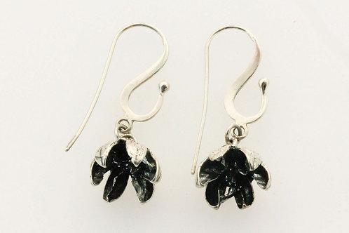 Callitris drop earrings