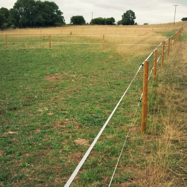 Wooden Post and Electric Tape Fencing