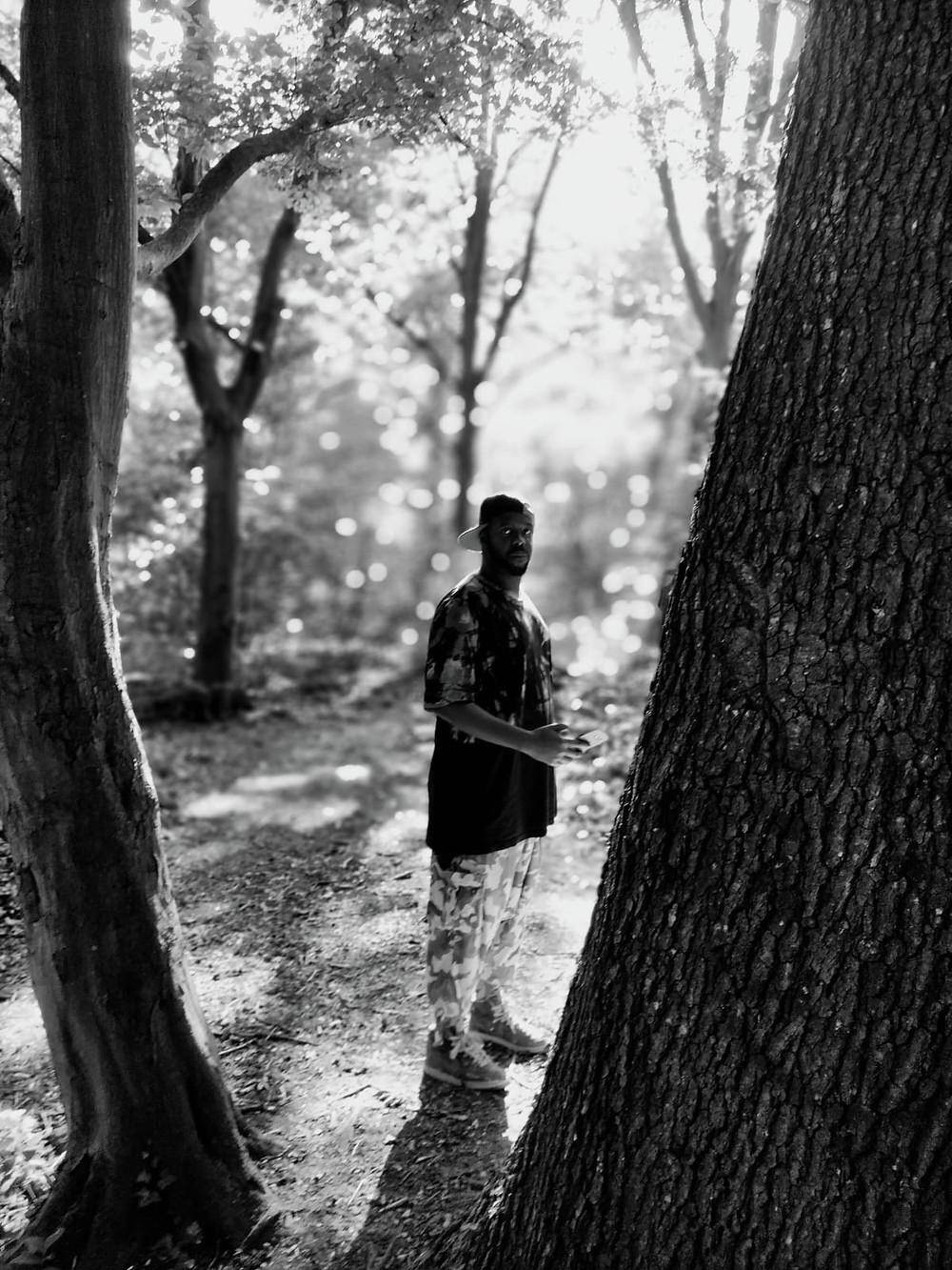 Egzo Xobeatbox foret arbre
