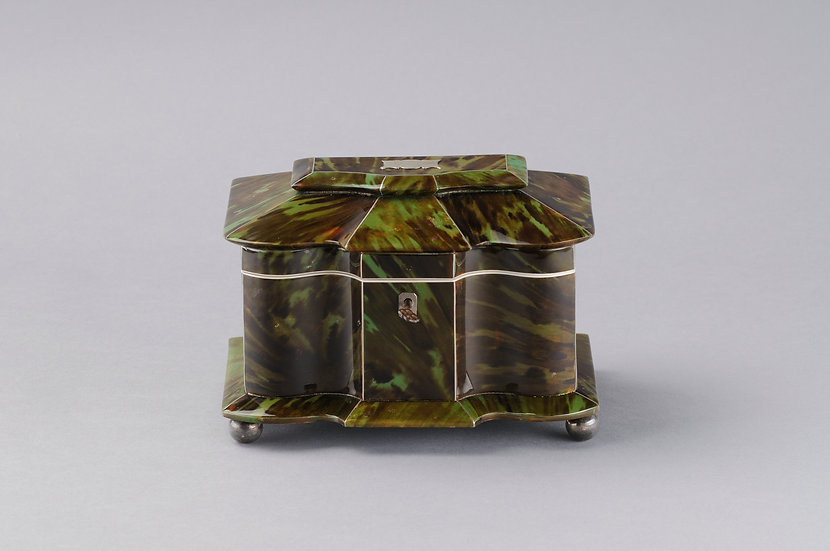 Rare green « Chelonia mydas » Tortoiseshell tea caddy.
