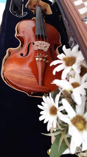 Violon MEG TY-7 - 4/4
