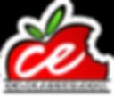 ce-classes logo.png