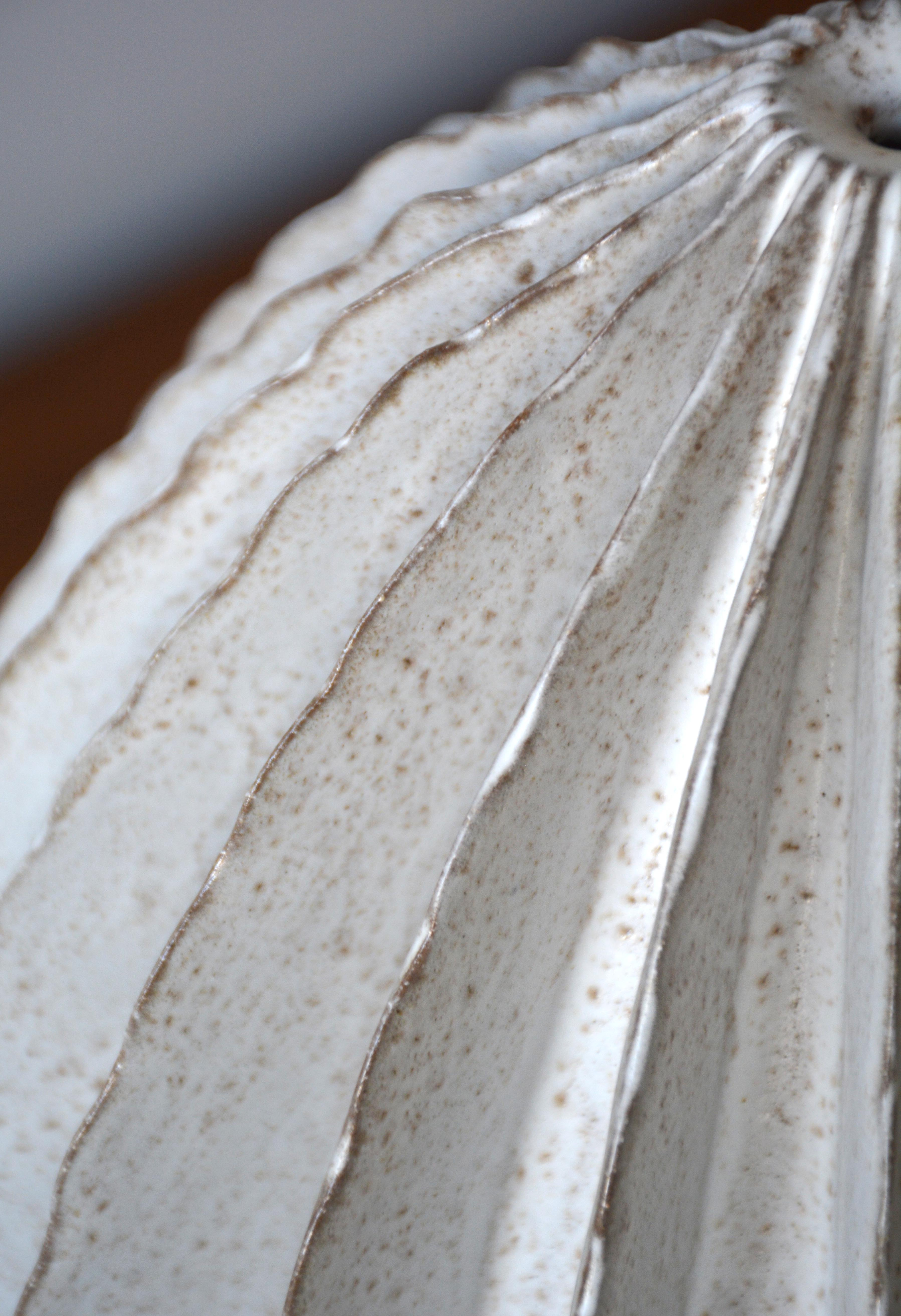 Shiitake White Pod Detail (2766)