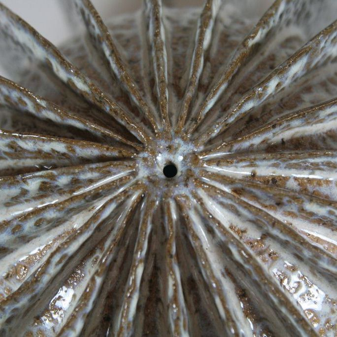 Mottled Pod Detail (3231)