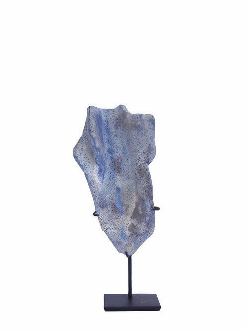 Blue Coral with Acrylic Base