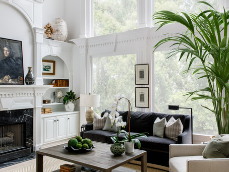 The Top 3 Trees to Use in Interior Design in 2021