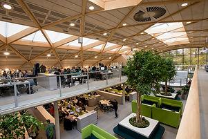 interior_(c) Richard Stonehouse_WWF-UK.j