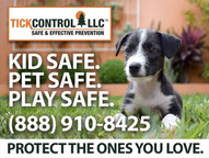 Tick Control, LLC services Lake Ave, Greenwich | Safe for Dogs | Tick and Mosquito