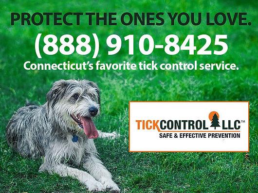 Tick Control Easton-TC-216205.jpg