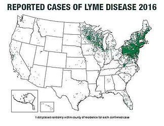 Lyme Disease is spreading.