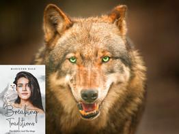BTPromowolf (1)_62491362426628.jpeg
