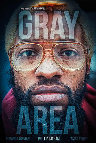 Gray Area Poster.jpg