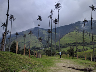 Salento and the Valley of Cocora