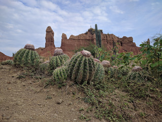 Tatacoa Desert