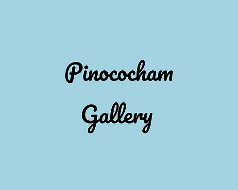 pinocochamgallery.png