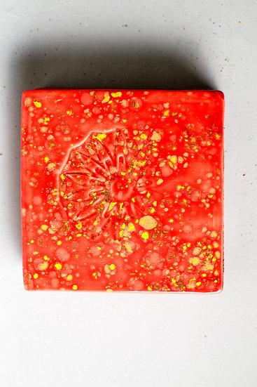 Sassy Strawberry Coasters