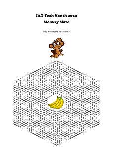 Monkey Maze.jpg