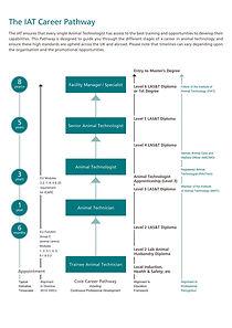 IAT Career Pathway A0 poster.jpg