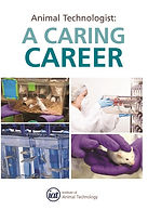 Click here to see the IAT Career Pathway