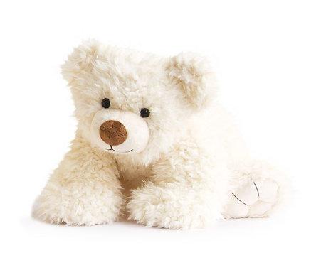 Historie d'Ours Polar Bear