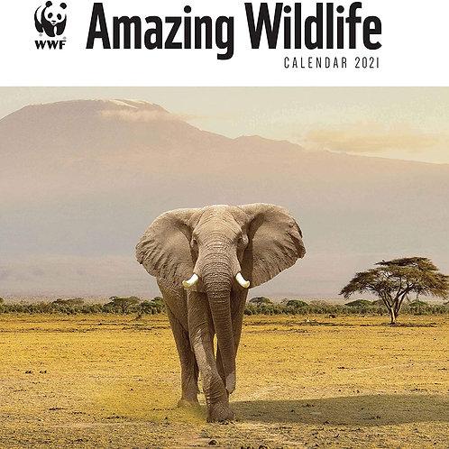 2021 WWF Amazing Wildlife Calendar