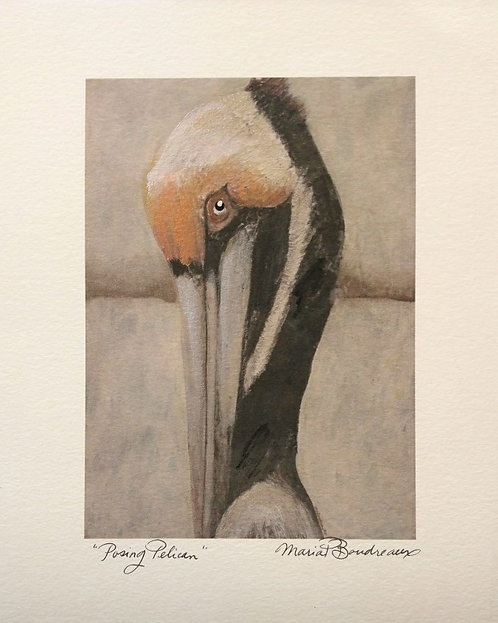 """Posing Pelican"" - Artist Enhanced Print"