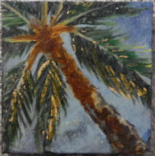 Square Palm I
