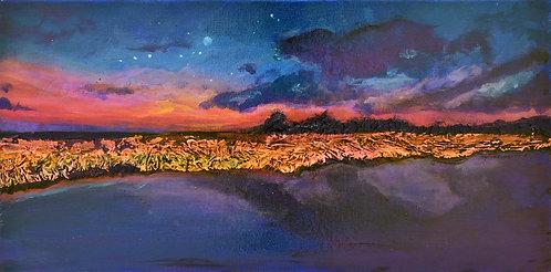 Florida Starry Night I