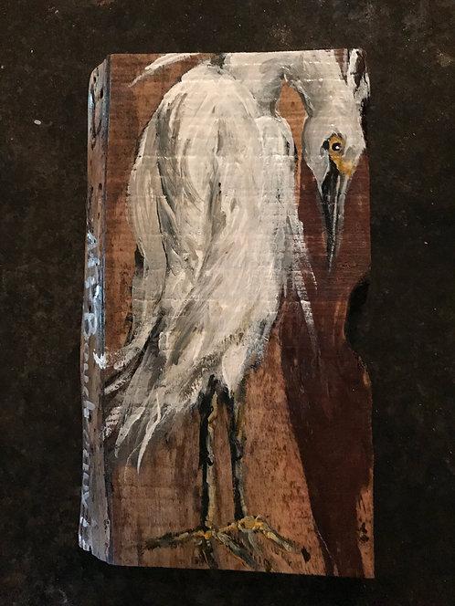 Small Egret on Cedar