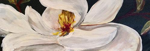Magnolia V