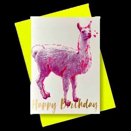 Lama Happy Birthday