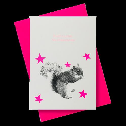 Eichhörnchen Sterne FW