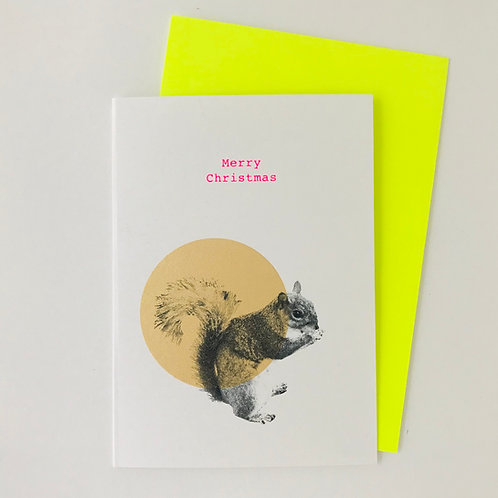 Squirrel gold