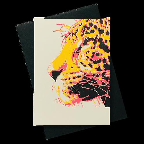 Jaguar Senf