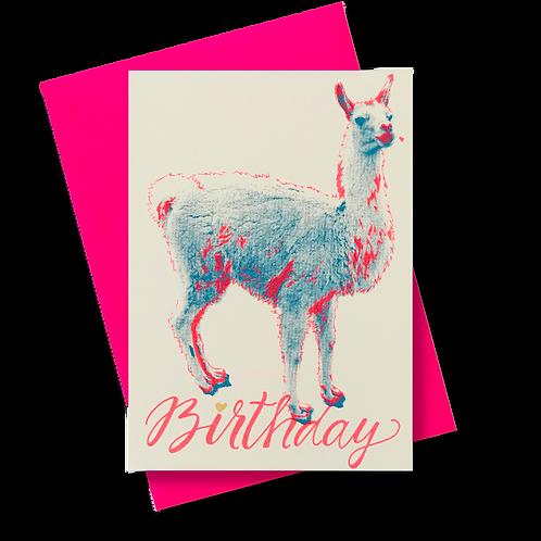 Lama Birthday
