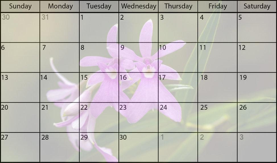 September-2020-Calendar_edited_edited.jp