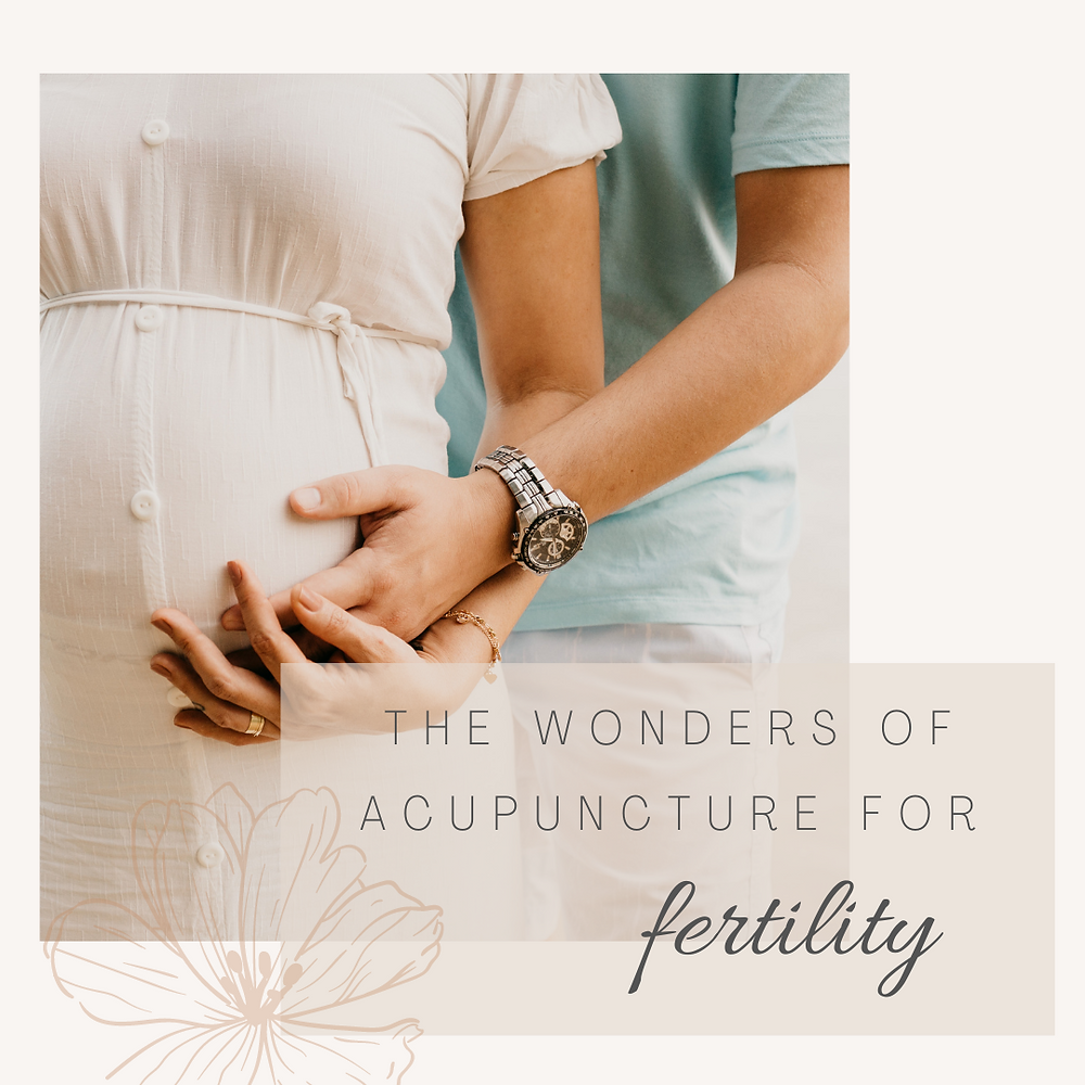 acupuncture for fertility, natural fertility, hawaii fertility doctor, natural health, doctor desoto