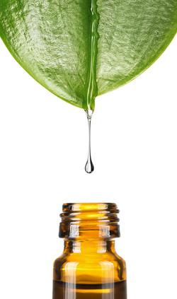 Herbal, alternative medicine, water drop