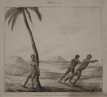 Tattooed man Bieng Punished Hawaii