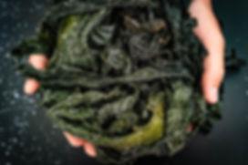 Heb ken-wakame-bio-frais sale.jpg