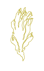 dulse simple ocre.png