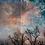 Thumbnail: Sky on Fire