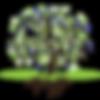 Logo OSW dicht groen zwart-01-01 Kopie.p