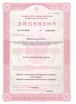 лицензия 1стр