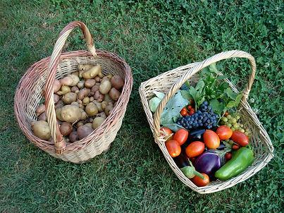 patate e pomodori.JPG